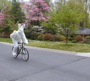 easter bike 1